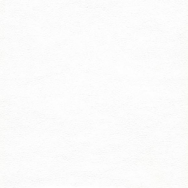 Экокожа CITY80011 WHITE